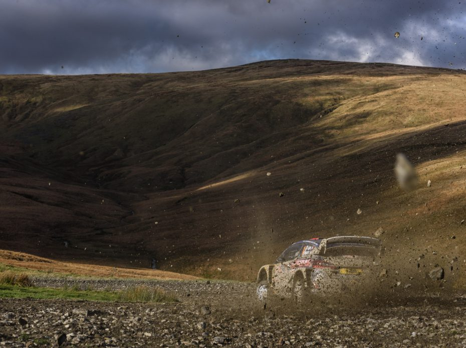 RALLY LANDSCAPES